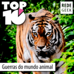TOP 10 – Guerras do mundo animal